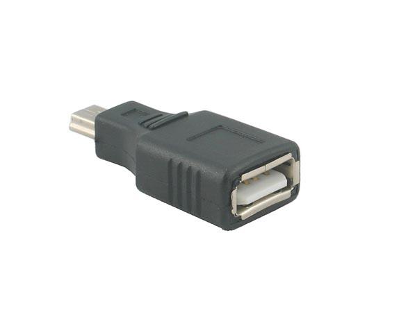 Straight USB A Female - Mini USB Male Adpater / Converter