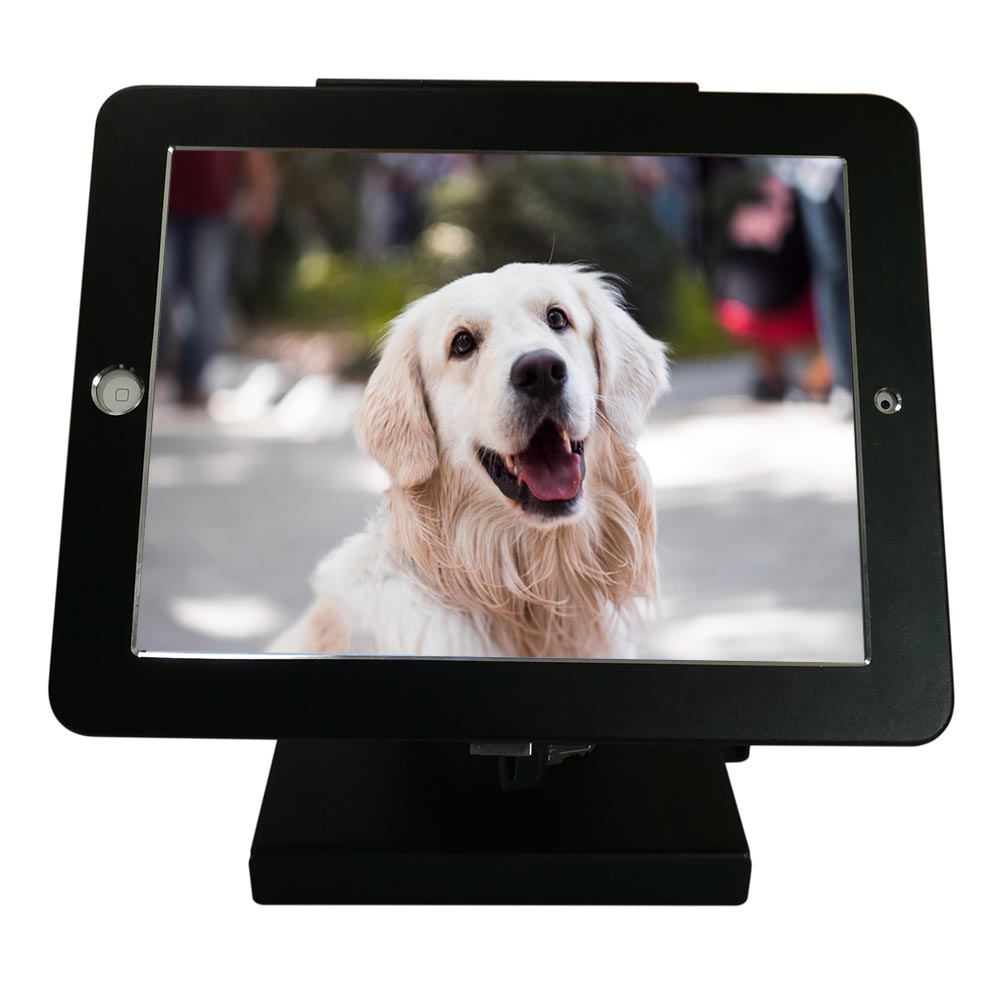 "Anti-Theft iPad Pro 12.9"" Destop / Kiosk / Wall Mount / Shop POS Stand, Secure Lock Enclosure & Keys"